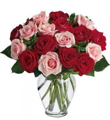 ramo-de-12-rosas-naturales-frescas-en-color-mixto-rojo-y-rosa-suave-flores-a-domicilio