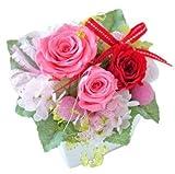 花由 プリザーブドフラワー パレット candypink 濃いピンク