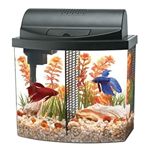 Aqueon Aquarium Betta Bow 2 5 Gallon Acrylic