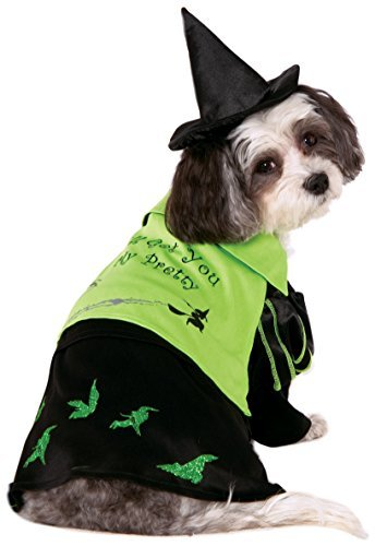 Wizard of Oz Pet Costume, Small, Wicked Witch of West