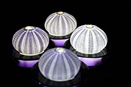 SeaThingz Flameless Candles - Sea Urchin for Indoor & Outdoor Decorative Novelty Lighting - LED Battery Operated Tealight for Elegant Home Decor - Unique Nonstandard Shaped Candle Purple pack of 4