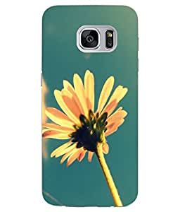 Snazzy Racing Bike Printed Multicolor Soft Silicon Back Cover For Samsung Galaxy S7