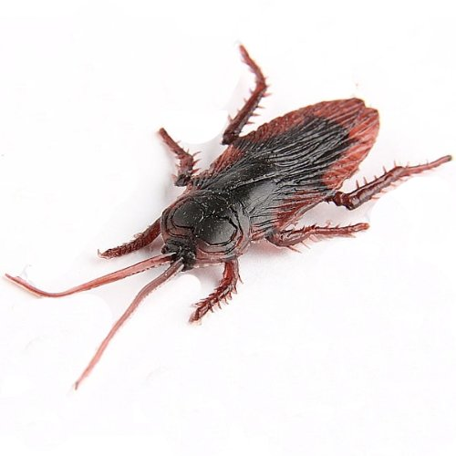 Creative Soft Cockroach Pattern Home Decor Refrigerator Fridge Magnet
