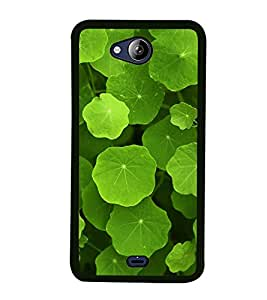 Green Leaves 2D Hard Polycarbonate Designer Back Case Cover for Micromax Canvas Play Q355