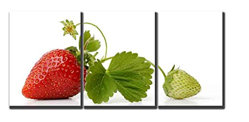 amoy-art-3-panels-modern-canvas-pictures-still-life-strawberry-wall-art-canvas-prints-for-kitchen-re