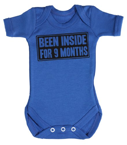Baby Buddha - Been Inside Babygrow Baby Clothes Newborn Blue front-1014320