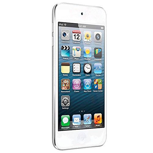 Apple iPod touch 16GB - MP3/MP4 players (MP4, Silver, Lightning, iOS, Lithium-Ion (Li-Ion), 1136 x 640 pixels)