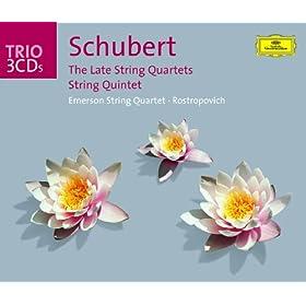 "Schubert: String Quartet No.12 in C minor, D.703 - ""Quartettsatz"" - Andante - Allegro assai"