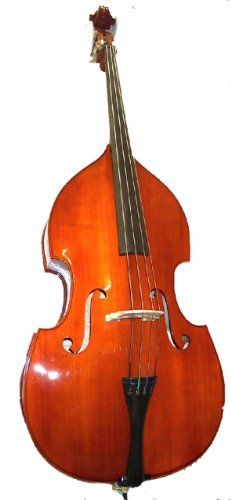 Rata Beginner Upright String Double Bass 4/4 Full Size for Students Teens Adults Orchestra Starter School