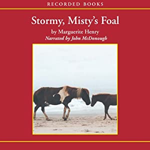 Stormy, Misty's Foal Audiobook