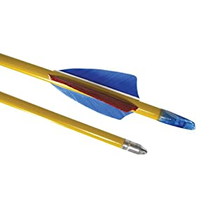 Buy Cajun Archery Standard Cedar Wood Arrows - Pack of 144 by Cajun Archery