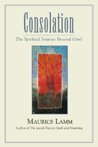 Consolation: The Spiritual Journey Beyond Grief PDF