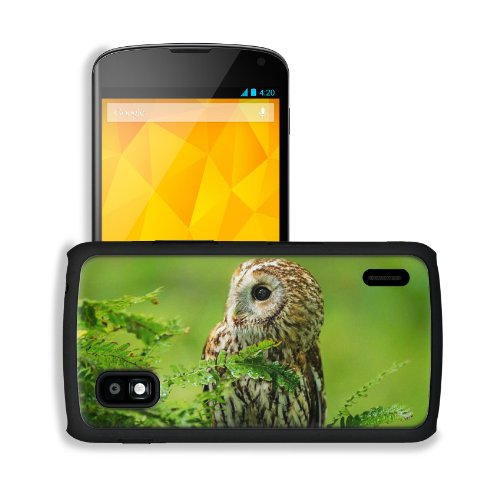 Owl Birds Predator Branches Nature Macro Google Nexus 4 Mako Snap Cover Case Premium Leather Customized Made To Order Support Ready 5 3/16 Inch (132Mm) X 2 13/16 Inch (72Mm) X 4/8 Inch (12Mm) Liil Nexus_4 Professional Cases Touch Accessories Graphic Cover