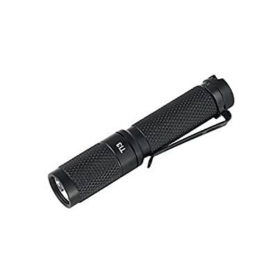 ThruNite Key Chain T Series LED Flashlight, Mini