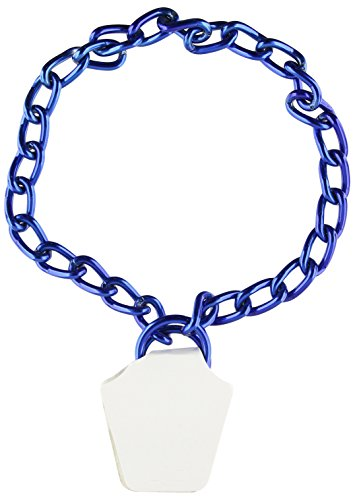 Platinum Pets 4mm Coated Chain Dog Collar 20-Inch, Sapphire Blue