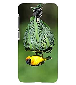 ColourCraft Bird and nest Design Back Case Cover for MICROMAX CANVAS XPRESS 2 E313