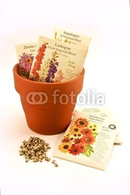 "Wallmonkeys Peel and Stick Wall Decals - Seed Packets in Flower Pot - 72""H x 48""W Removable Graphic"