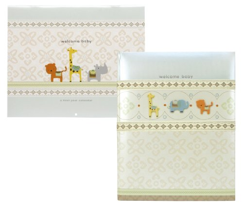 Carter'S Baby Keepsake Milestone Set, Wonder