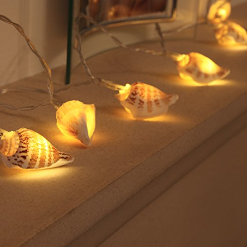 battery-operated-sea-shell-fairy-lights-10-warm-white-led-by-festive-lights