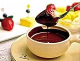 ロイヤルガストロ チョコレートフォンデュセット(8~10人分300g/専用フォンデュパン付)【化粧箱】