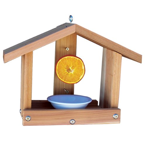 oriole feeder plans