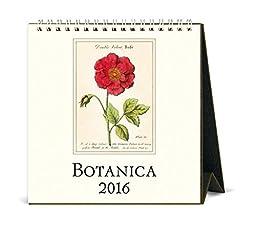 Cavallini Papers & Co CAL16-12 2016 Botanica Desk Calendar