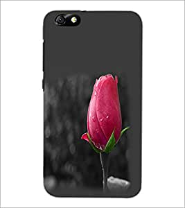 PrintDhaba Rose Bud D-2360 Back Case Cover for HUAWEI HONOR 4X (Multi-Coloured)