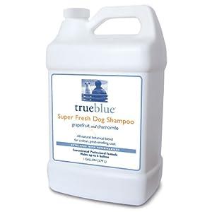 True Blue Super Fresh Concentrated Dog Shampoo, 1-Gallon