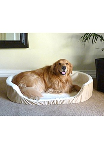 36x24-Khaki-Lounger-Pet-Dog-Bed-By-Majestic-Pet-Products-Large