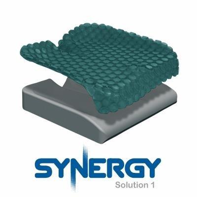 solution chemistry 17 Synergy Solution 1 Cushion - 17 X 19