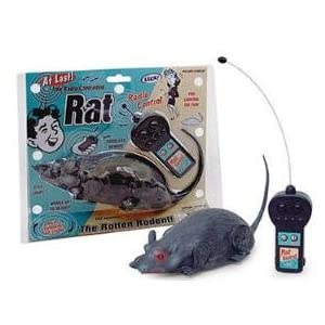 Radio Controlled Rat- The Rotten Rodent
