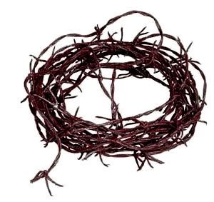 Rusty Barbed Wire Garland Party Accessory (1 count) (1/Pkg)