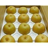 京都産 京たんご梨 豊水 5kg 大玉12~14個入り化粧箱