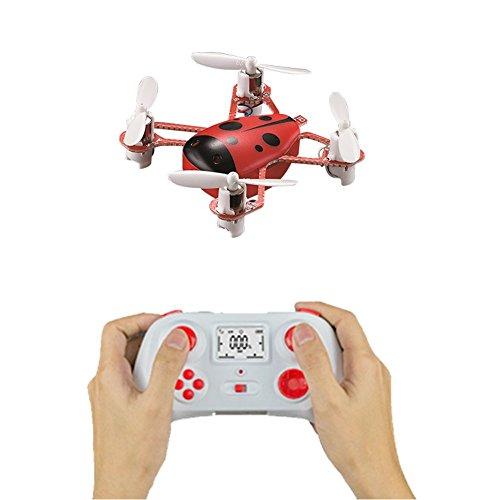 Mini Quadcopter Käfer