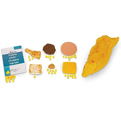 Sources Of Biotin In Food