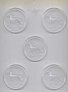 Greyhound L List CK Products Greyhound on