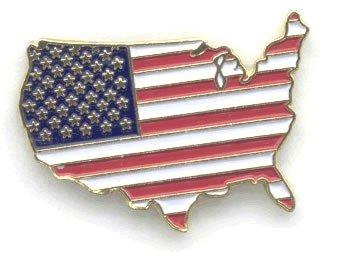 United States Map Flag Lapel Pin