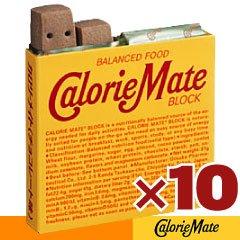 大塚製薬 カロリーメイトブロック (チョコ味)4本入×10箱