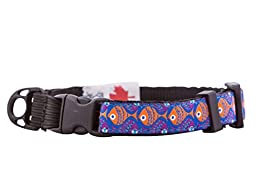 RC Pet Products 1/2-Inch Kitty Clip Cat Collar, 8 by 10-Inch, School\'s Out