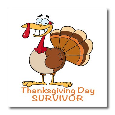 3Drose Ht_118709_3 Funny Thanksgiving Day Survivor Turkey-Iron On Heat Transfer For White Material, 10 By 10-Inch front-395357