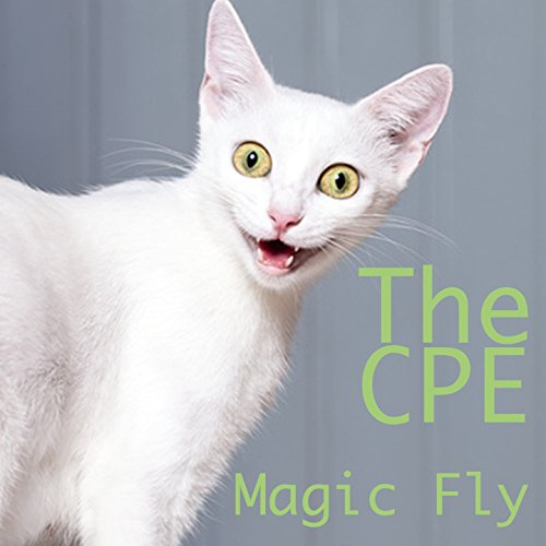 magic-fly-house-remix-brutto-netto-katzen-werbung-song