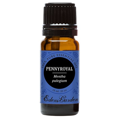 Pennyroyal 100% Pure Therapeutic Grade Essential Oil by Edens Garden- 10 ml