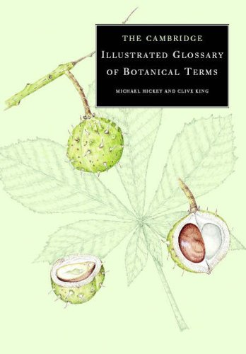 the-cambridge-illustrated-glossary-of-botanical-terms