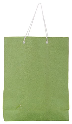 Utsav Kraft Paper 3 Ltrs Green Reusable Shopping Bags (pack Of 10) - B01M0EUMKT