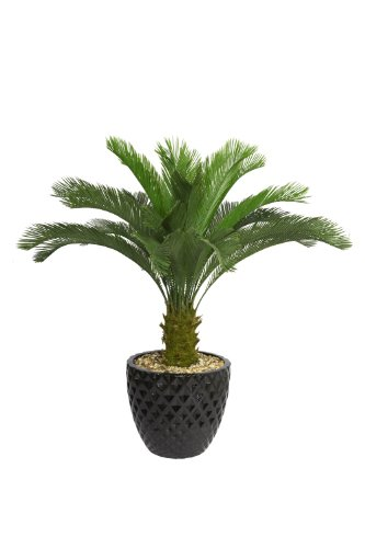 Laura Ashley Vhx111205 54-Inch Cycas Palm Tree In 16-Inch Fiber Stone Planter front-992205