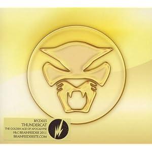 Thundercat Amazon on The Golden Age Of Apocalypse  Thundercat  Amazon Fr  Musique