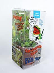 9GreenBox – Venus Fly Trap w/ Gift Bo…