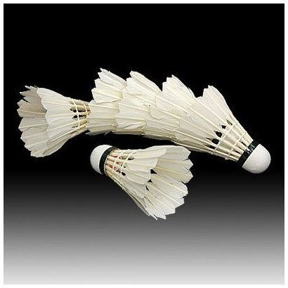 SODIAL(TM) 6PCS White Feather Shuttlecocks Badminton