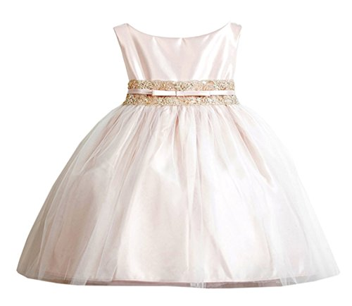 Sweet Kids Baby-Girls Vintage Satin & Lace Tulle Dress 18M L Champ (Sk B473)