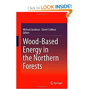 Wood-Based Energy in the Northern Forests by Michael Jacobson and Daniel Ciolkosz